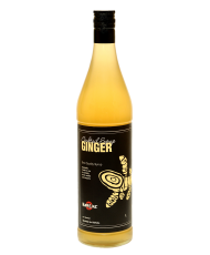 Ginger (Имбирь)